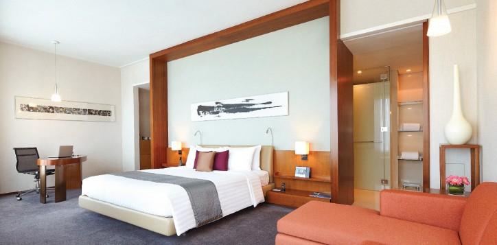 rooms-suites-executive-premier-suite-jpg-2