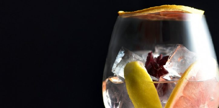 gin-01-2