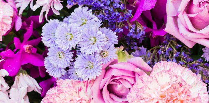 flower_banner-2