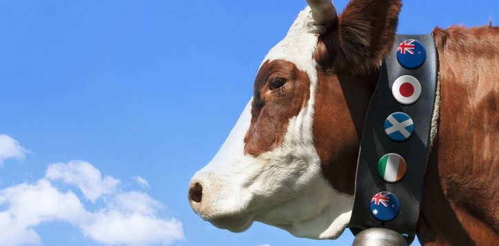 special-offer-beefpromotion-jpg-2