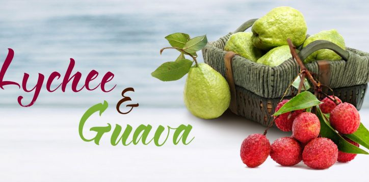 lychee-and-guava-banner-2